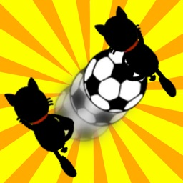Crazy Pass Cat! -Avoid the enemy!-
