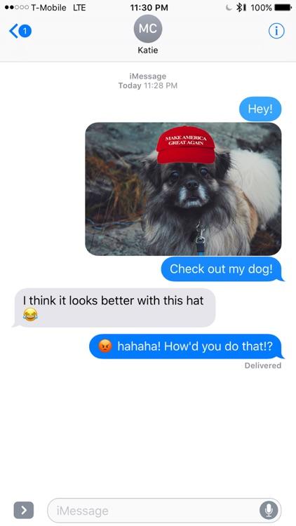 Trump Stamp