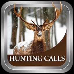 Hunting Calls Fun