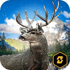 Activities of Wild Deer Hunt: Real Hunter Challenge 2016
