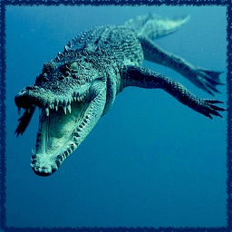 Ultimate Hungry Crocodile Sea War 3D