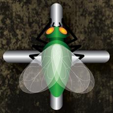 Activities of Rail Flies