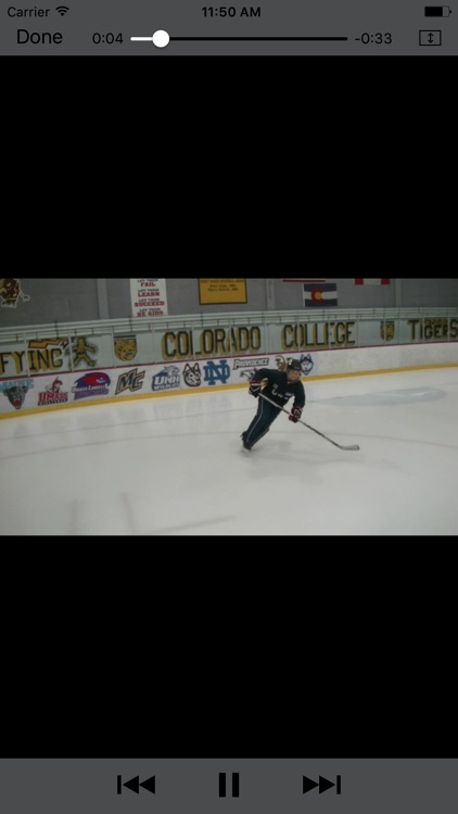 Hockey 1-4 screenshot-4