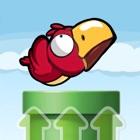 大嘴鸟 icon