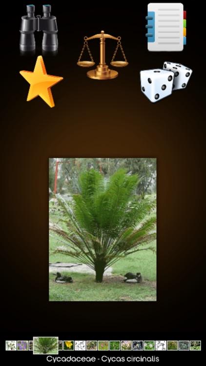 Medicinal Plants Encyclopedia screenshot-3