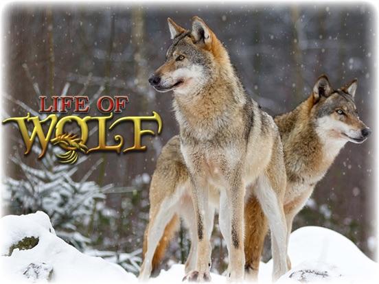 Игра Волк: волки охота симулятор жизни корма и расти