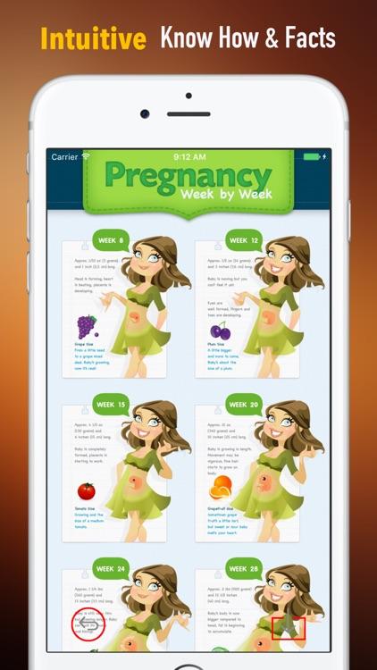 Fetal Development Week by Week Guide