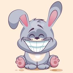 Stkyz: Gray Bunny