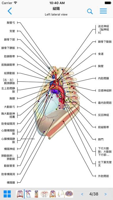 IMAIOS e-Anatomyスクリーンショット