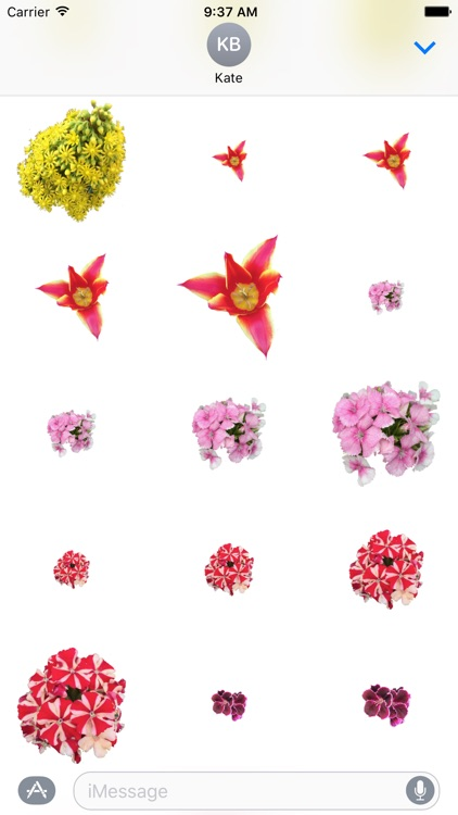 Flower Stickers 花貼紙 screenshot-4