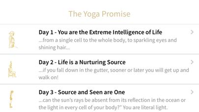 The Yoga Promiseのおすすめ画像2