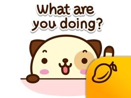 Pandadog - Mango Sticker