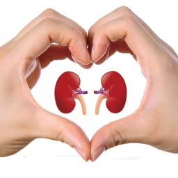 Kidney Detox 101-Diet Guide and Healthy Recipes