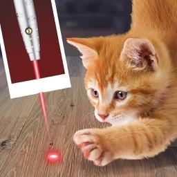 Laser Point For Cat Joke