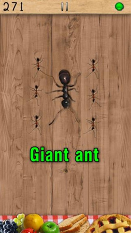 Ant Smasher screenshot-2