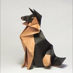 Origami Club