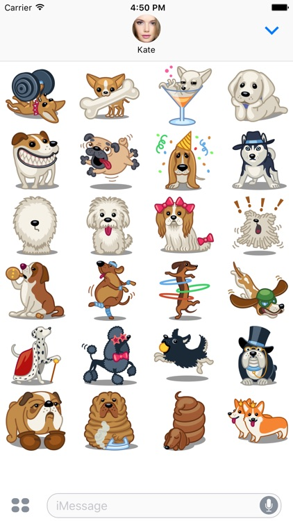 Dog Stickers Pack