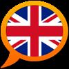 English Multilingual dictionary - Vladimir Demchenko