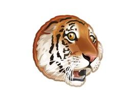 WWF VK