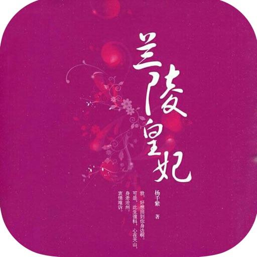 热播电视剧同名小说:兰陵王妃