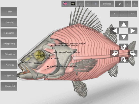 3d Fish Anatomy App Price Drops
