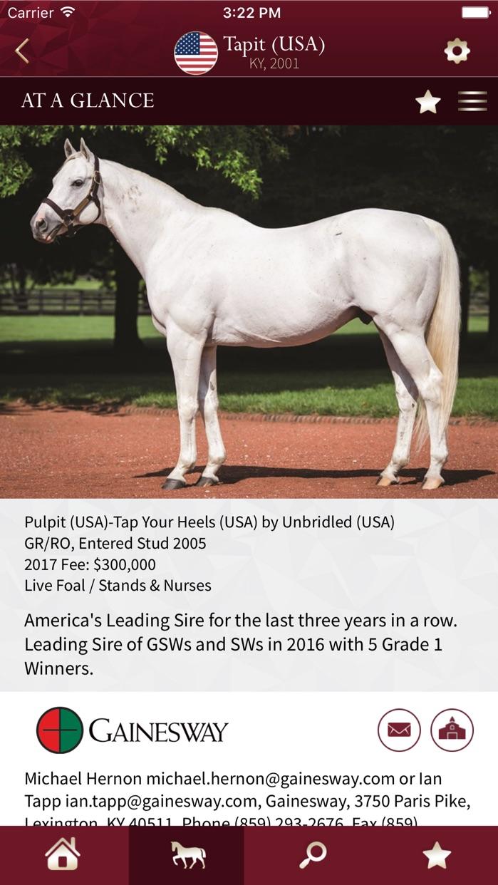 Global Stallions Screenshot