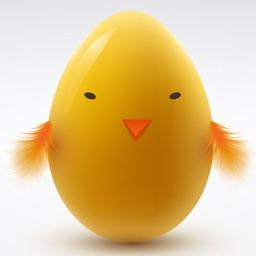 Eggs VS Basket