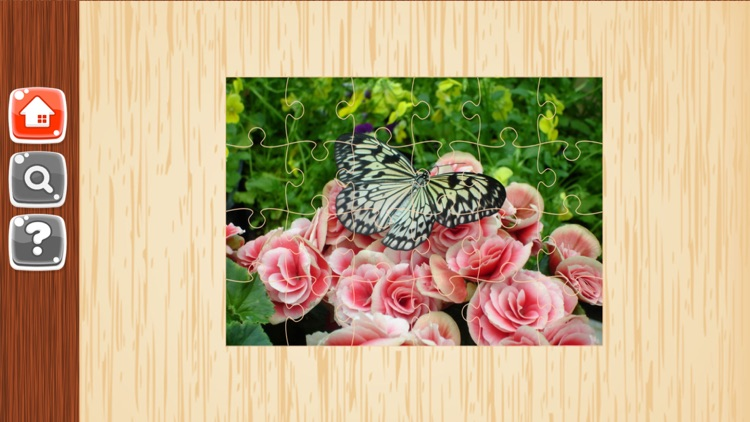 Butterfly Puzzles - Jigsaw Puzzle Game For Kids screenshot-3
