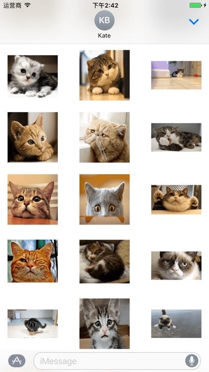 Small Kitty screenshot-3