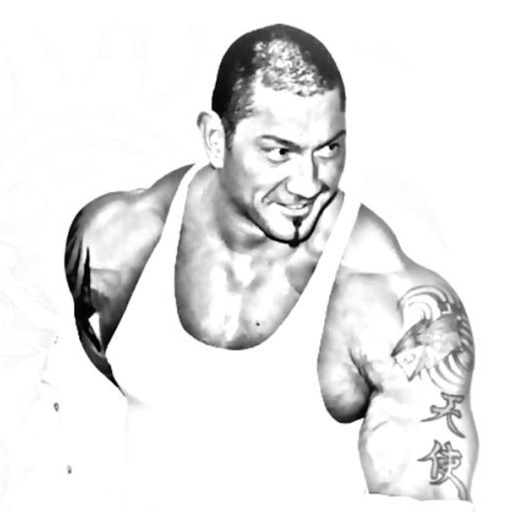 Ultimate Wrestlers Collection icon
