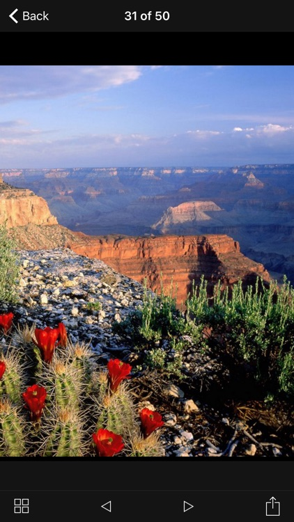 Grand Canyon Park Travel Explorer screenshot-4