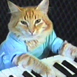 Keyboard Cat Stickers!