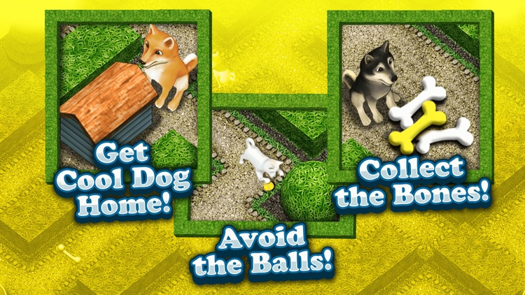 Cool Dog 3D My Cute Puppy Maze Game for Kids Free screenshot-3