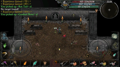 Screenshot from 9th Dawn II