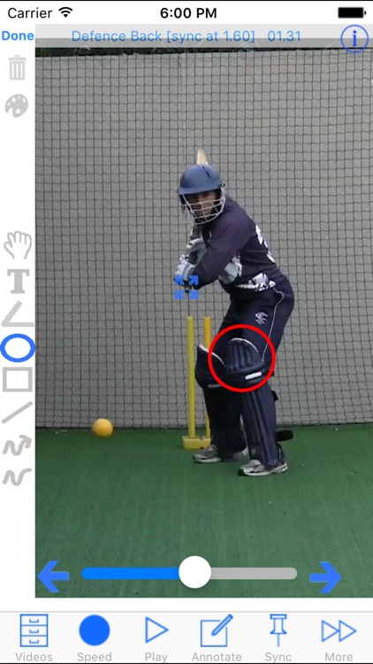 Cricket Coach Plus HD screenshot-0