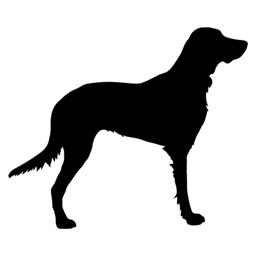 Dog Shadow Sticker