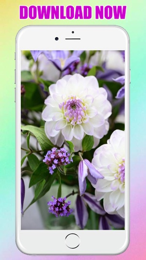Flower Wallpaper Background For Iphone And Ipad On The App Store