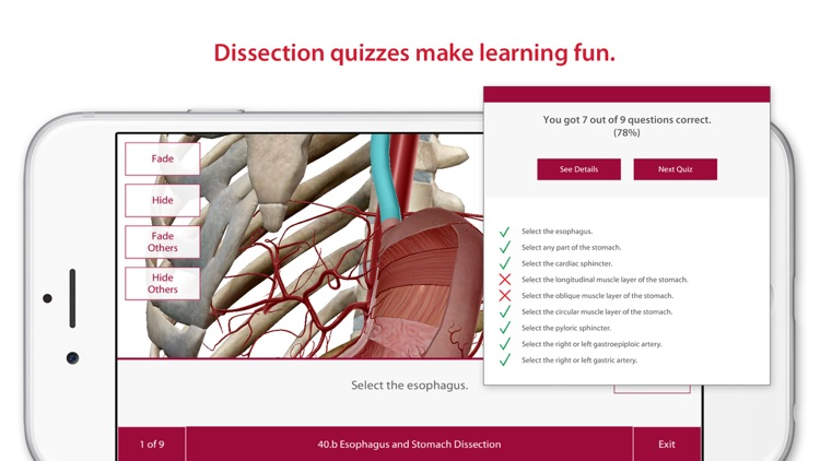 Anatomy & Physiology: Body Structures and Function screenshot-3