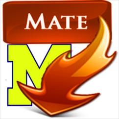 Video Mate: Music Playlist & TubeMate Audio Player Обзор приложения