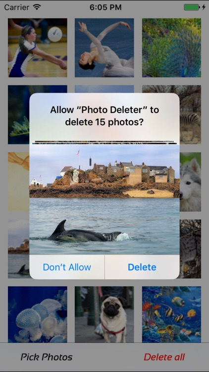 Photo Manager - fast  deleter
