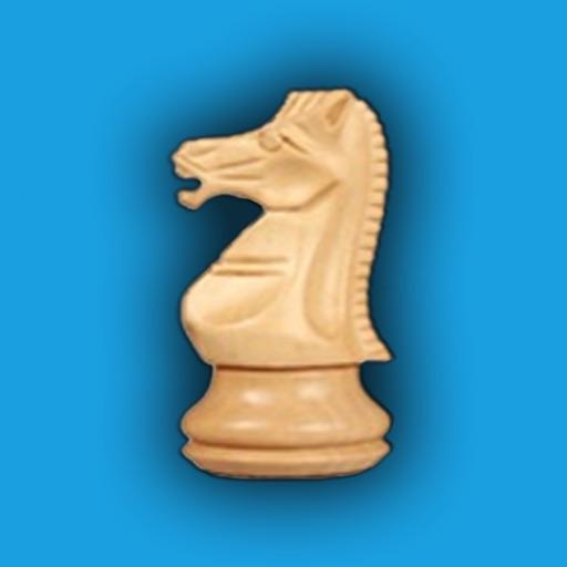 Шахматы+
