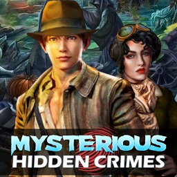 Hidden Crimes Mysterious