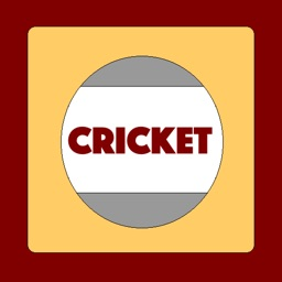 AAA Cricket Sport - Guide to game, players, record