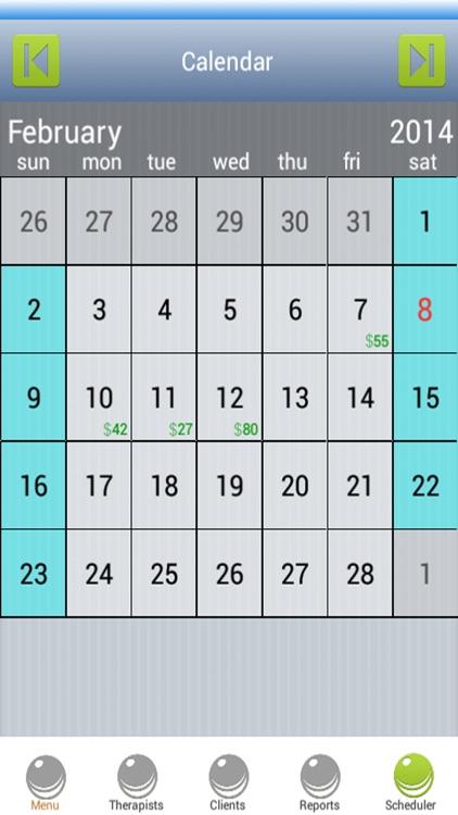 Massage Scheduling Software screenshot-3