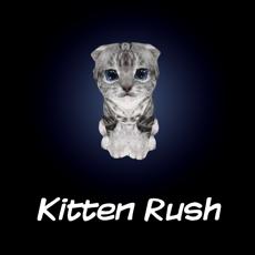 Activities of Kitten Rush