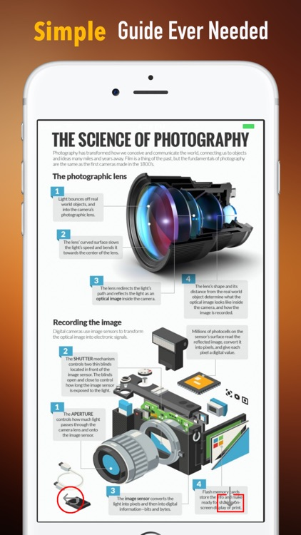Photography for Beginner-Tips and Tutorials