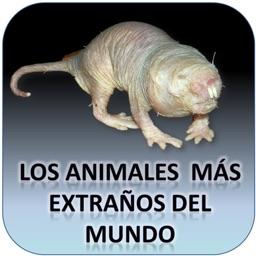 Los Animales más Extraños del Mundo - AudioEbook