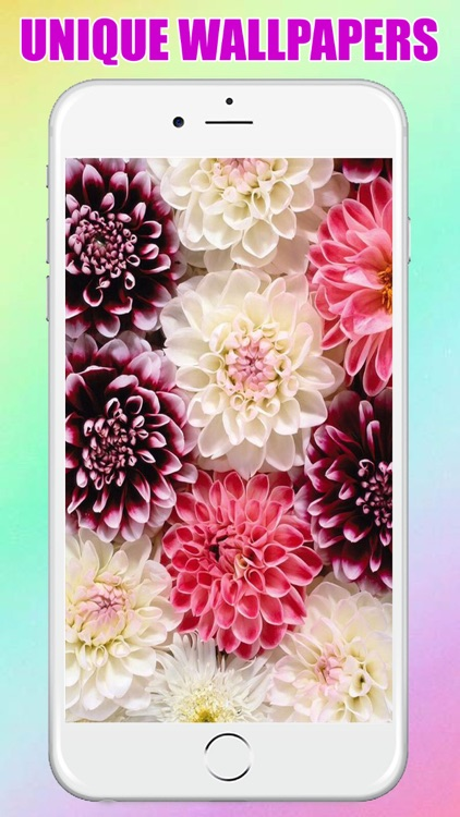 flower Wallpaper & Background for Iphone and Ipad