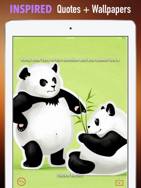 Screenshot 5 For Panda Wallpapers HD Backgrounds And Art Pictures