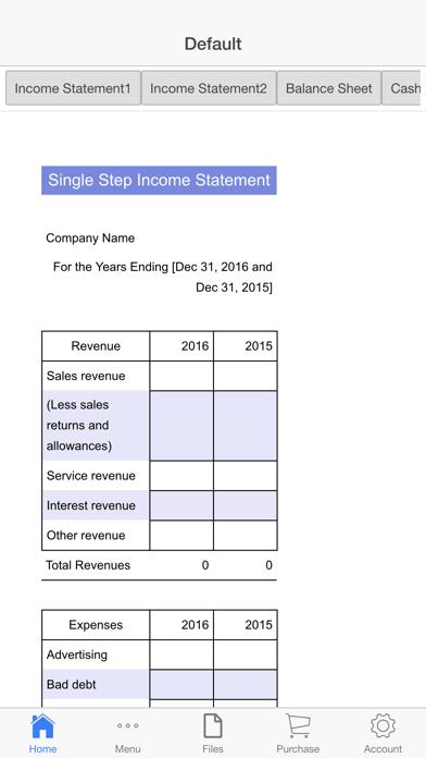Financial Statements Screenshots